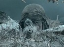 Дуэль снайперов Смертельная схватка Военный боевик 2017
