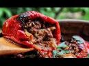 BEST STUFFED PEPPERS! - Clay Cookware Coals
