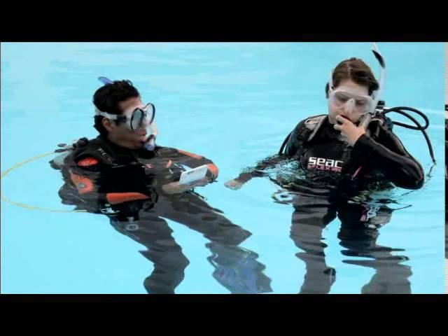 Начальный курс дайвинга. Обучающее видео PADI Open Water Diver (PADI OWD)- часть 1