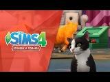 The Sims 4 Кошки и собаки  Играйте с кошками