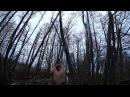Охота 144 на бобра, красивые звуки природы