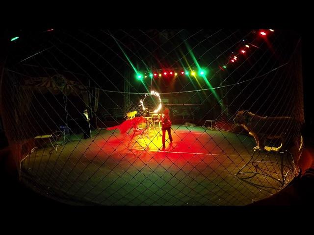 Московский цирк-шапито в Уфе