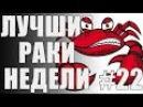 ЛРН выпуск №22. Юные экспериментаторы Лучшие Раки Недели