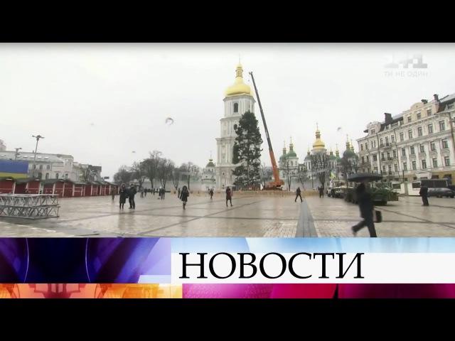 На Украине обсуждают потрепанный вид новогодней елки, которую установили в Киеве.