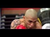 лучшая мотивация для бокса
