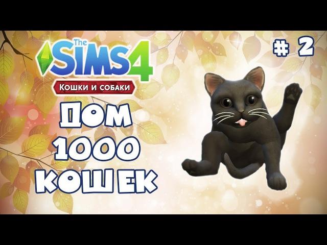 The Sims 4 - Дом 1000 кошек. 2 - Кошачья драка. Жульен вернись!!