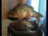 Рыба в духовке. Карась, карп, щука, запекаем в рукаве. Fish in the oven