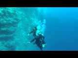 Diving in Dahab 2015. November - Decemer