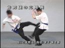 天行健中国武術館DVD武術篇より 斧刃脚の応用例