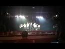Отчетный концерт Cats + I fly