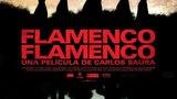Flamenco, Flamenco (2012, документальный, музыка, Испания)
