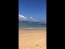 Пляж 🏝 Шри Ланки