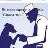 """Ветеринарная клиника """"Спасатель"""" г. Краснодар"""