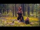 Бурые медведи танцуют ламбаду