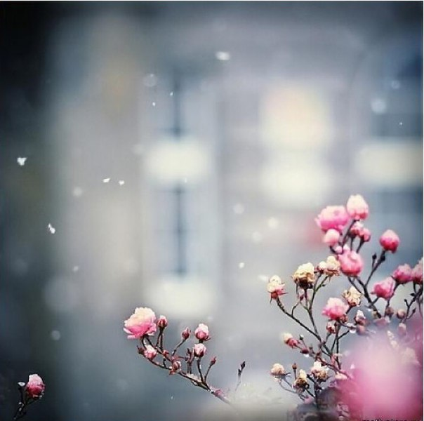 """Вот так утром просыпаешься, подходишь к окну и возникает чувство повторяемости сюжетов, без выхода на самый главный финал и внутри возникает много разных чувств. И начинаешь слушать себя, задавая себе вопрос: """"А почему я сейчас это чувствую Это чувство от"""
