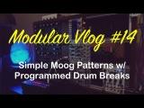 Modular Vlog #14 - Simple Moog Patterns w Programmed Drum Breaks