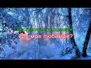 Сергей Никитин Я спросил у ясеня караоке DJSerj