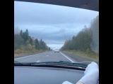 aleksandra_nazarova_777 video