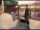Vozvraschenie Muhtara 2 7 sezon 49 seriya iz 96 2011 XviD SATRip