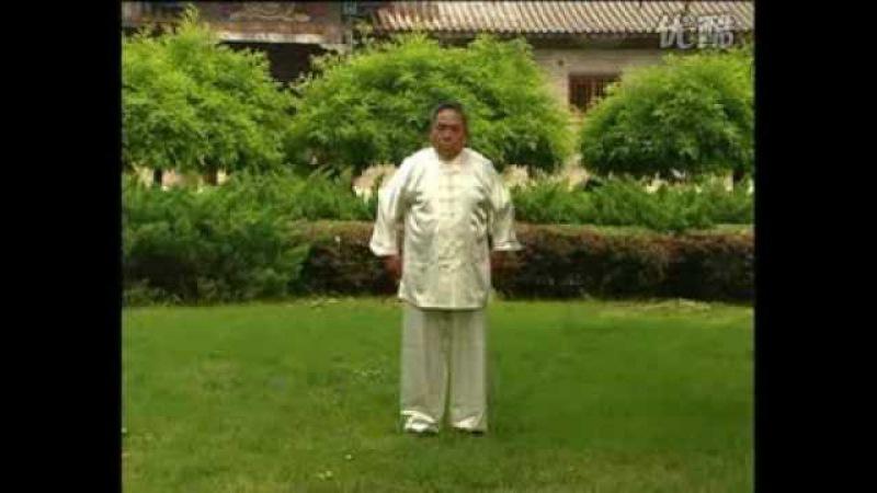 Hunyuan gong fa 2 Feng Zhiqiang