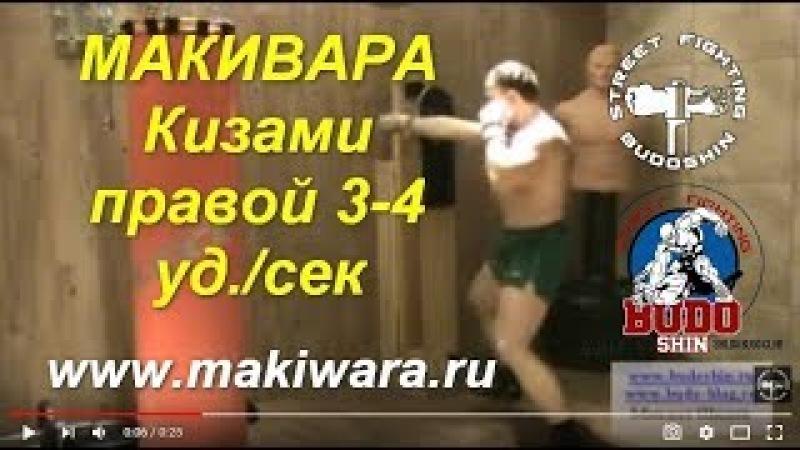 МАКИВАРА. Кизами правой 3-4 уд./сек. Михаил Шилов