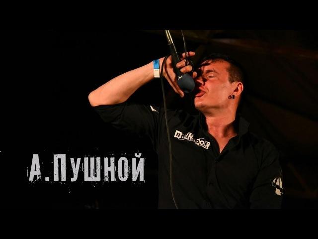 А.Пушной - Серо-желтая весна (cover Александр Матвеев)