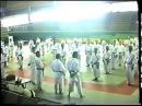 M. Teruo Hayashi - Stage Internazionale di Ostia 26/07/1991
