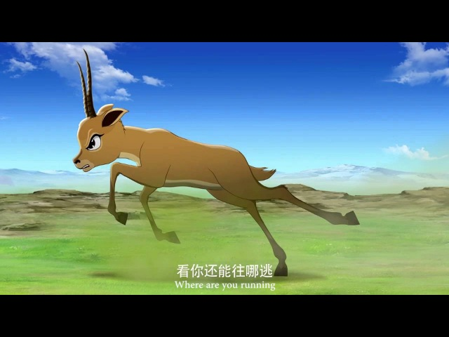 The King of Tibetan Antelope