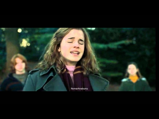 I'm not an owl! (Harry Potter and the Goblet of Fire)