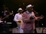 Willie Dixon Blues Band ( Live) Carey Bell Harmonica