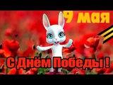 С праздником 9 мая Zoobe Зайка Красивое поздравление с 9 мая БРОСОК НА НЕБЕСА