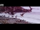 Натти - Целуй 720p