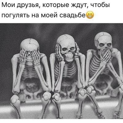 Илья Шавель