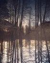 Елена Машкина фото #3