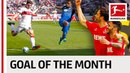 Top 10 Goals in May 2018 Vote for the Goal of the Month