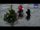 Как казанские дайверы отмечают новогодние праздники