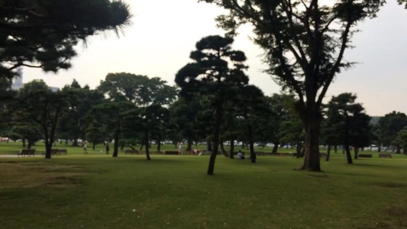 Императорский дворец. Парк. Токио