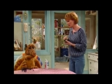 Alf Quote Season 2  Episode  21_Лечение криком