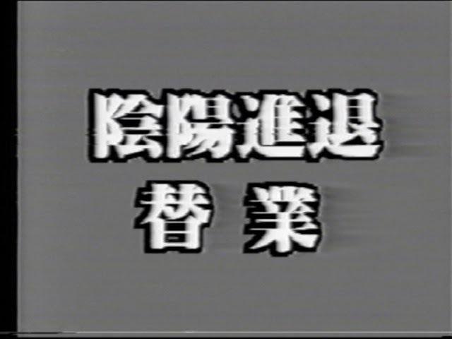 Muso Shinden Ryu and Seitei Iai