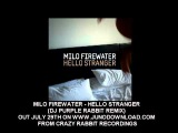 Milo Firewater - Hello Stranger(Dj Purple Rabbit DnB remix) out now on all good download sites