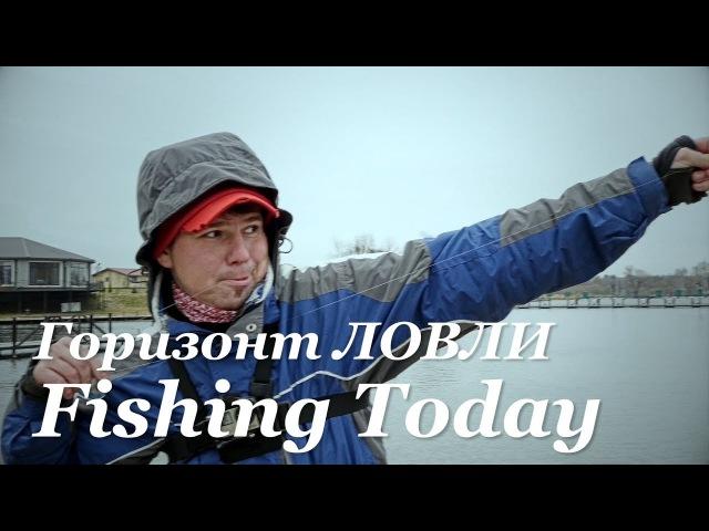 Как искать горизонт ловли прудовой форели. Важность поводка. Итоги конкурсов - Fishing Today