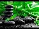 Элитный шунгит шунгитовая вода шунгитовая пирамида шунгитовые шары амулеты и др Почему в природ