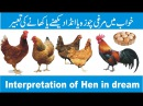 Khawab mein murghi dekhna. khawab mein chooza dekhnay ki tabeer. interpretation of Hen in dream