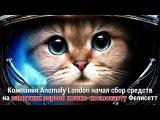Во Франции начали сбор денег на памятник первой кошке-космонавту | FUTURIST