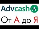 Advanced Cash Ввод Вывод Обмен Перевод Регистрация Advanced Cash кошелька