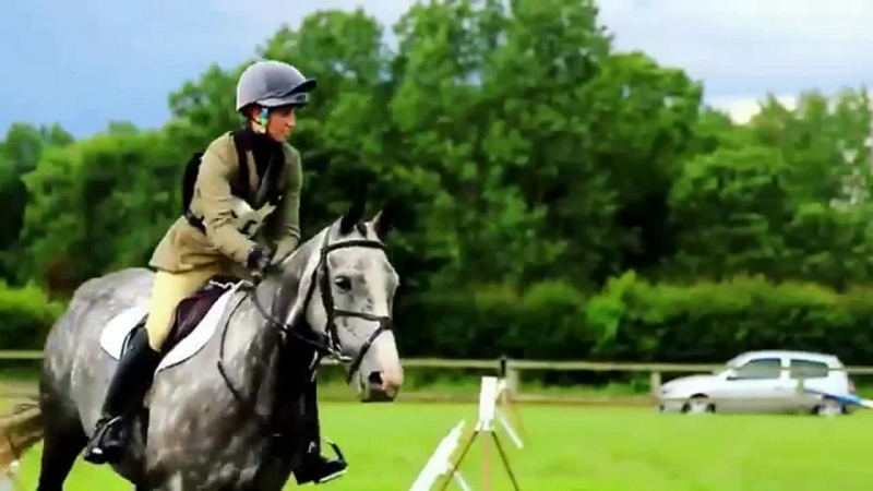Equestrian sport _8