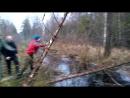 Сооружаем мост из подручных елок