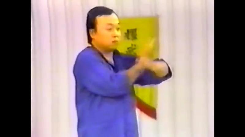 Августин Фонг винчун 3 одиночная техника сию лим тау Часть 1