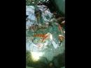 Великолепие рыбок