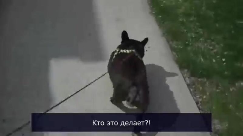 Фуууу